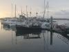 The St. Augustine Marina