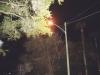 A-cemetery-streetlight-at-night
